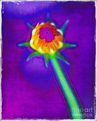 Reaching For The Light Print by Judi Bagwell