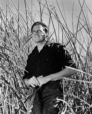 Reaching For The Sun, Joel Mccrea, 1941 Print by Everett