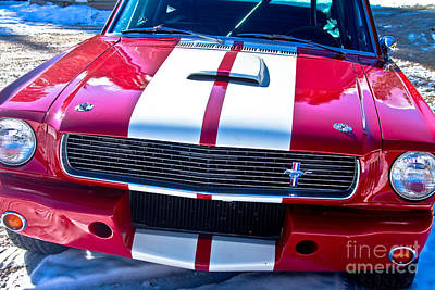 Red 1966 Mustang Shelby Print by James BO  Insogna