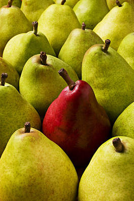 Abundance Photograph - Red And Green Pears  by Garry Gay