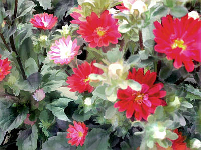 Asters Painting - Red Asters by Elaine Plesser