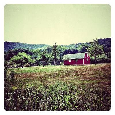 Rural Scenes Photograph - Red Barn by Natasha Marco