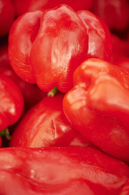 Y120907 Photograph - Red Bell Peppers by Cameron Davidson