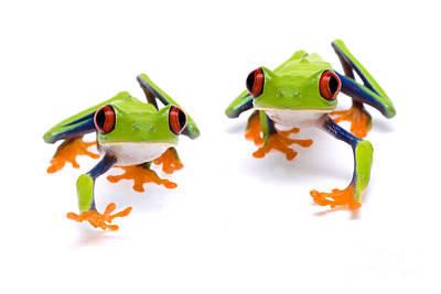 Red-eyed Treefrogs Walking Print by Mark Bowler and Photo Researchers