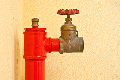 Red Fire Hydrant Print by Tom Gowanlock
