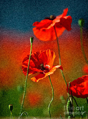 Paint Photograph - Red Poppy Flowers 08 by Nailia Schwarz