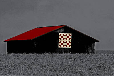 Red Roof  Print by Kris Napier