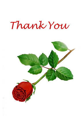Red Rose Thank You Card Print by Irina Sztukowski