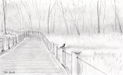 Animal Drawing - Red Wing Black Bird In Wildlife Preserve  by Sherri Strikwerda