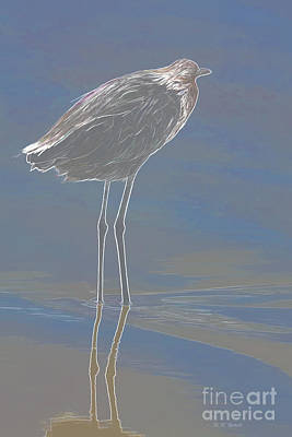 Egret Mixed Media - Reddish Egret by Deborah Benoit