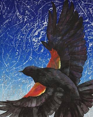 Blackbird Drawing - Redwing by Sara Bell