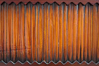 Reed Wood Print by Tom Gowanlock