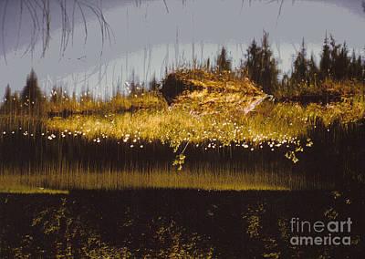 Reflection Print by Alcina Morello
