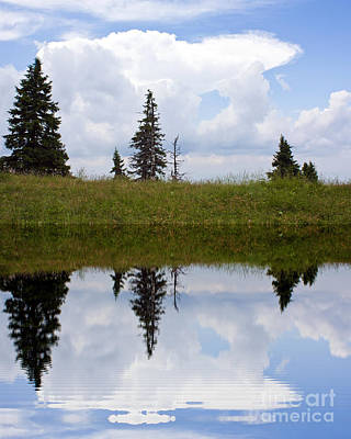 Reflection Of Lake Print by Odon Czintos