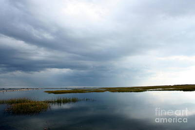Reflections Print by Gail Behrik