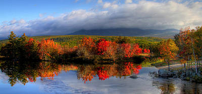 Reflections In Maine Print by Sharon Batdorf