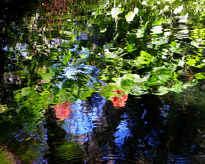 Reflections Of Fall In The Spring Print by Judy Wanamaker