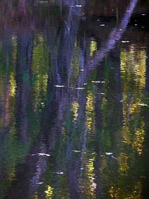 Mission Ventures Photograph - Reflections Of Monet by Terry Eve Tanner