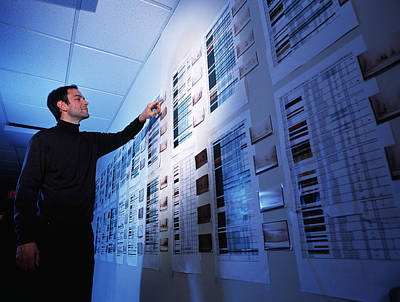 Wall Chart Photograph - Researcher With Human Proteome Map by Volker Steger