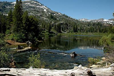 Nevada Photograph - Rest On The Log Lily Lake by LeeAnn McLaneGoetz McLaneGoetzStudioLLCcom