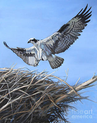 Osprey Painting - Return To The Nest by Deb LaFogg-Docherty