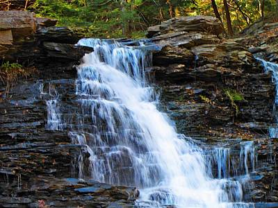 Tree Photograph - Ricketts Glen Waterfall 4063  by David Dehner