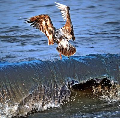 Riding The Wave  Print by Debra  Miller