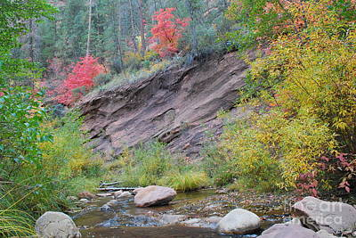 Fall Photograph - Rimmed In Red Horizontal by Heather Kirk