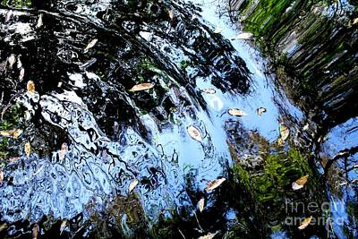 Ripples And Reflections Print by Theresa Willingham