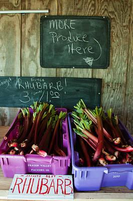 Roadside Produce Stand Rhubarb Print by Denise Lett