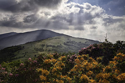 Roan Mountain Afternoon Print by Rob Travis