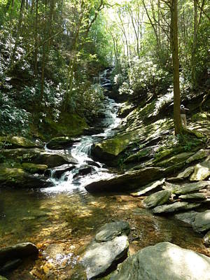 Roaring Creek Falls - II Print by Joel Deutsch