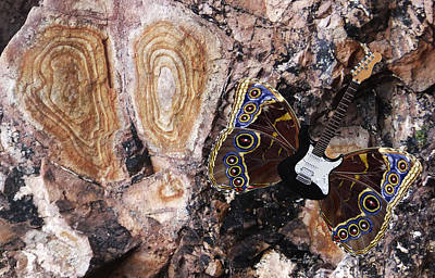 Lepidopterans Digital Art - Rock Of Ages by Eric Kempson