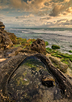 Western Australia Photograph - Rock Pool View by Daniel Carr