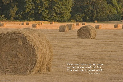 Rolled Bales In Western Oregon Print by Mick Anderson