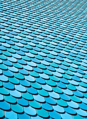 Roof Panels Print by Tom Gowanlock