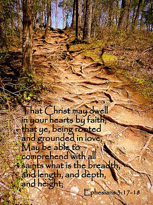 Rooted Path With Scripture Print by Cindy Wright
