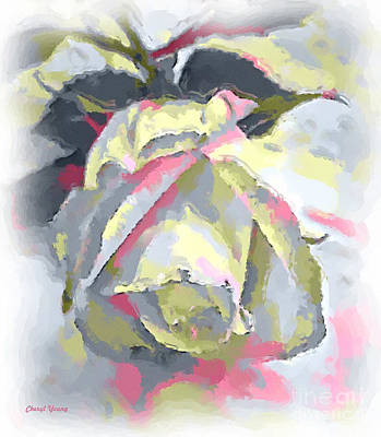 Rose Painting Print by Cheryl Young