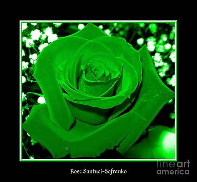Bud Photograph - Rose With Green Coloring Added by Rose Santuci-Sofranko