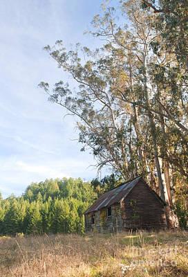Log Cabin Photograph - Run-down Barn In Field by Matt Tilghman