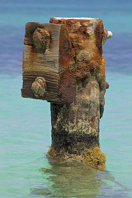 Rusted Dock Pier Of The Caribbean Iv Print by David Letts