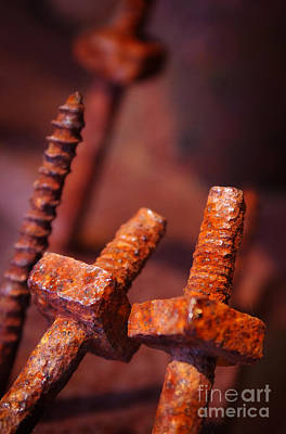 Machinery Photograph - Rusty Screws by Carlos Caetano