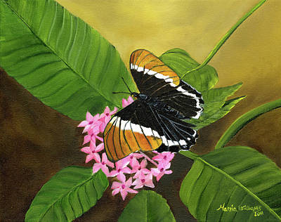 Butterfly Painting - Rusty-tipped Butterfly  by Maria Williams