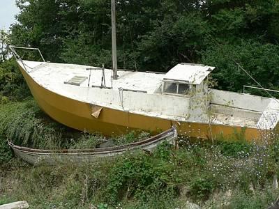 Sailboat Shipwrecked Print by Amanda Lenard