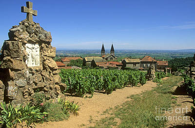 Beaujolais Photograph - Saint Joseph En Beaujolais. France by Bernard Jaubert