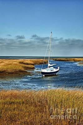 salt Marsh Sailboat Print by John Greim