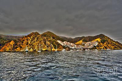 Santa Catalina Island Print by Cheryl Young