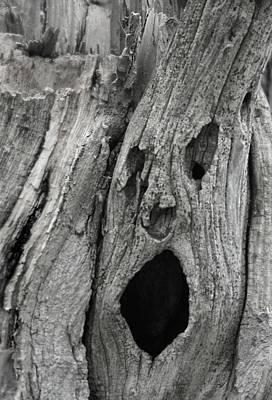 Scream Print by Odd Jeppesen