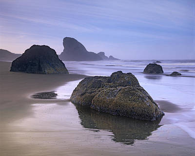 Sea Stack And Boulders At Meyers Creek Print by Tim Fitzharris