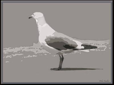 Flying Seagull Mixed Media - Seagull by Debra     Vatalaro